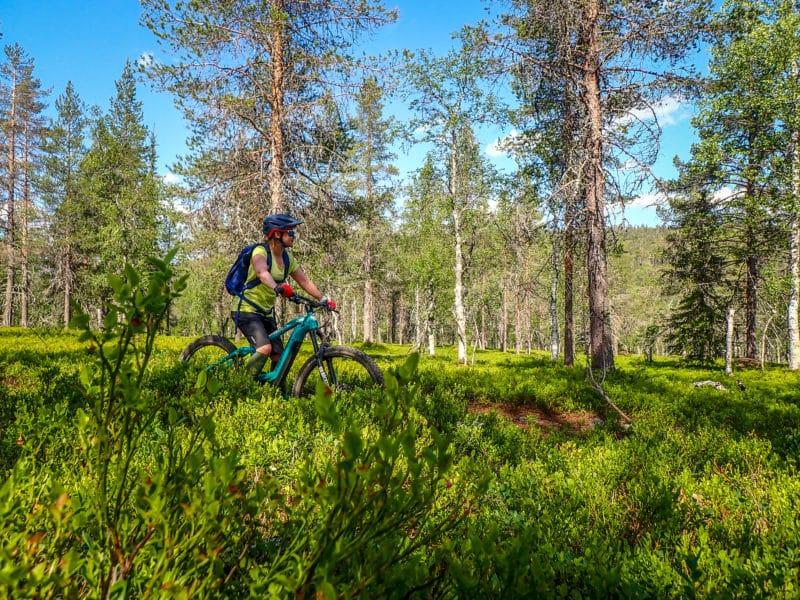Maastopyöräily Ylläs